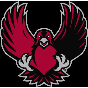 Iup athletics crimson hawks apparel store indiana for Hawks t shirt jersey